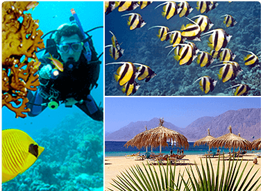 sites red sea